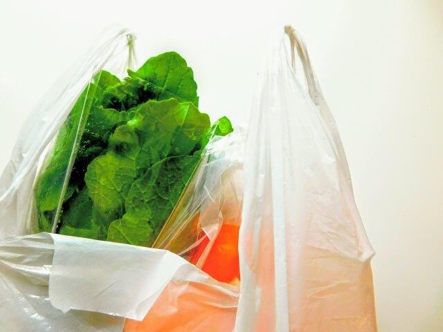 食材の入った袋