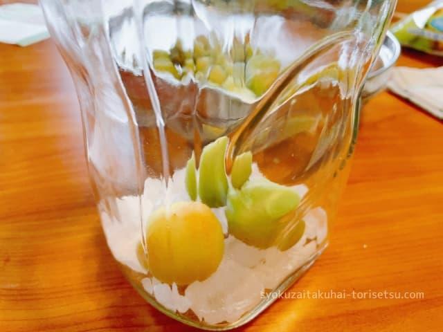 梅と氷砂糖を瓶に入れる